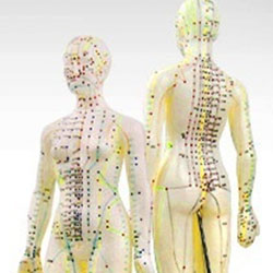 Acupressure Points - Body