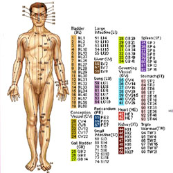 Acupressure Points Chart